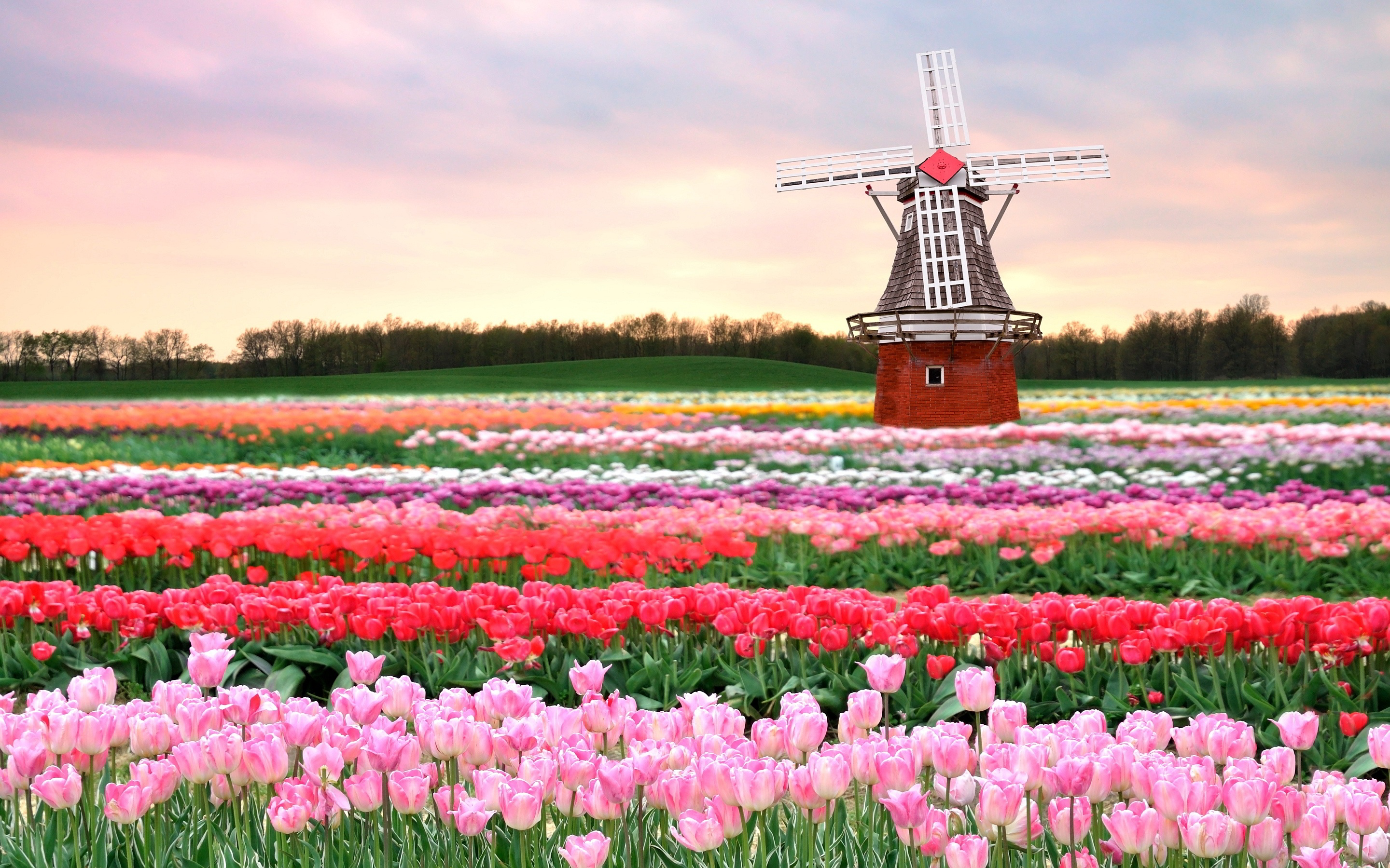 8 Places To Visit During Spring